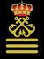 Palas capitan de yate 50 Titulaciones náuticas